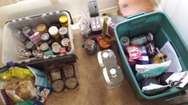 Trip staging: food tote and race tote