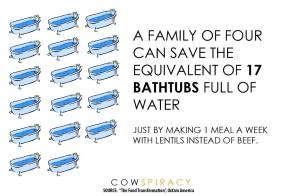 lentils vs meat