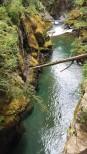 Laughing Creek hike 11