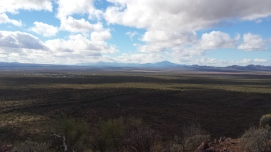 Views from Brown Mountain Trail