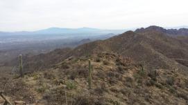 Views from Wasson Peak